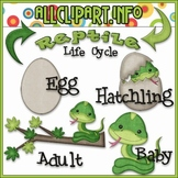 TPT EXCLUSIVE BUNDLE - Life Cycles Clip Art - Reptiles