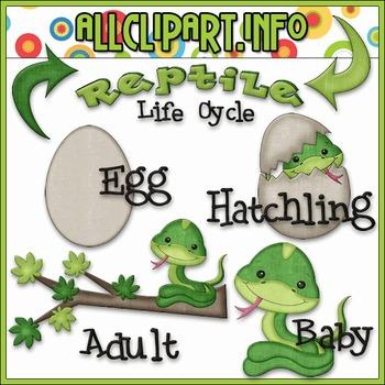 TPT EXCLUSIVE BUNDLE - Life Cycles Clip Art - Reptiles