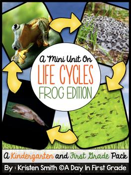Life Cycles- Frog Edition