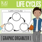 Life Cycles Graphic Organizer Template- No Prep! Printable and Digital