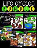 Life Cycles Bundle {Creative Clips Digital Clipart}
