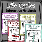 Life Cycles Interactive Notebook