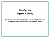 Life Cycles Jigsaw