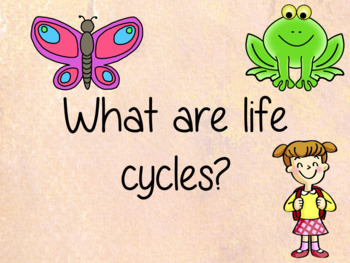Animal Life Cycles Knowledge Harvest Lesson