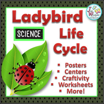 Life Cycles LADYBIRD LIFE CYCLE Unit with Craftivity