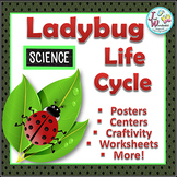 Life Cycles LADYBUG LIFE CYCLE Unit with Craftivity