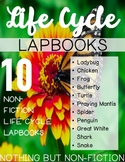 Life Cycle Lapbooks