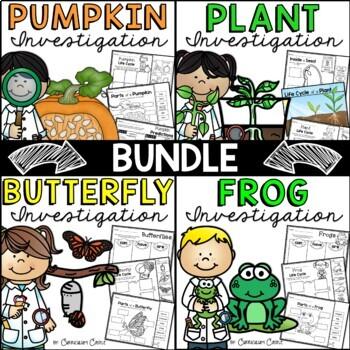 Life Cycles Mega Bundle: Plant, Pumpkin, Butterfly & Frog!