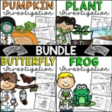 Life Cycles BUNDLE: Plant, Pumpkin, Butterfly & Frog!