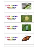 Life Cycles Memory Game
