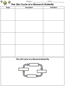 Life Cycles: Monarch Butterfly Study Guide Outline - King Virtue's Classroom