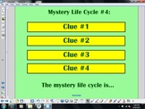Life Cycles Notebook Lesson