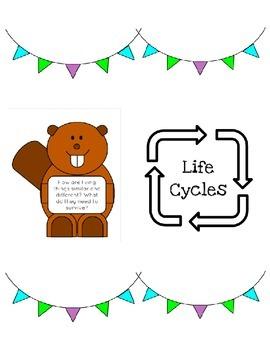 Life Cycles PBL