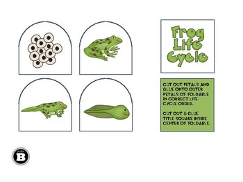 Life Cycles Petal Foldables