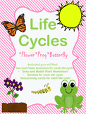 Life Cycles Plant, Frog, Butterfly