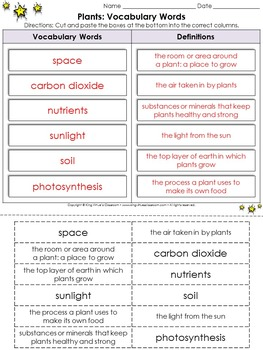 Life Cycles: Plants Vocabulary Words Cut and Paste Activity #2 - Plants Need