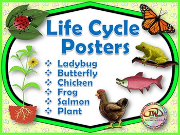 Life Cycles - Posters