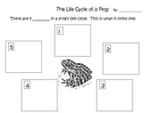 Life Cycles Printables and Activities