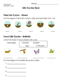 Life Cycles Quiz