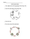 Life Cycles Quiz - 2nd Grade VA SOLs