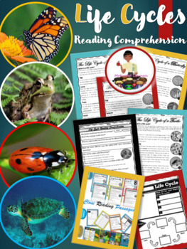 Life Cycles Reading Comprehension Passages  April