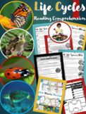 Life Cycles Reading Comprehension Passages | Butterfly Lif