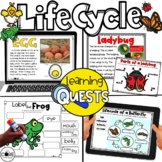 Life Cycles Self-Directed Research | for Google Slides and Seesaw
