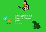 Life Cycles SMARTBOARD