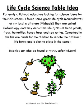 Life Cycles Science Table Idea