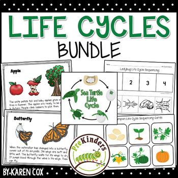 Life Cycles Set