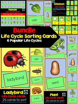 Life Cycles Sorting Cards Bundle