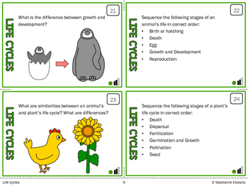 Life Cycles Task Cards