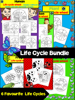 Life Cycles Wheels/Bundle