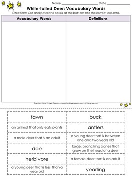 Life Cycles: White-tailed Deer Vocabulary Words Cut and Paste Activity