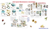Life Cycles Worksheets & Activities 50+ page Packet