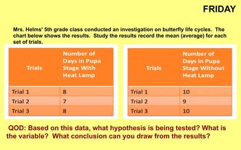 Life Cycles and Metamorphosis Review