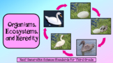 Life Cycles and Traits (NGSS for Third Grade)