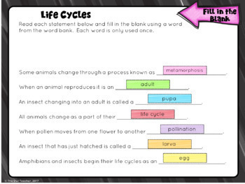 Life Cycles for Google Classroom