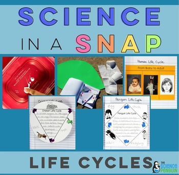 Life Cycles in a Snap