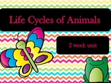 Life Cycles of Animals - 2 Week Unit Plan