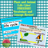 Life Cycles of Animals and Plants