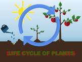 Life Cycles of Plants Animated PowerPoint Readers' Theater With Tests Bundle