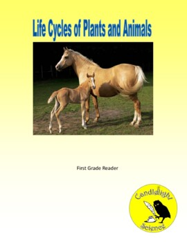 Life Cycles of Plants and Animals - Science Info Txt Leveled Reading Passage