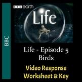 Life - Episode 5: Birds - Video Worksheet & Key (Editable)
