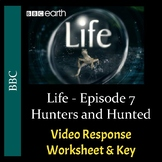 "BBC's ""Life"" - Episode 7: Hunters and Hunted - Worksheet & Key - PDF & Digital"