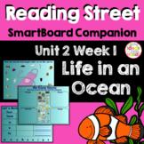 Life In an Ocean SmartBoard Companion Kindergarten