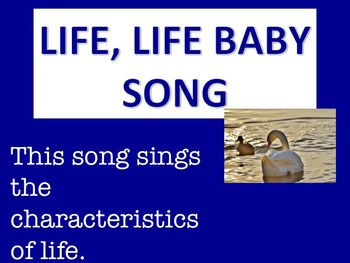 Life, Life Baby