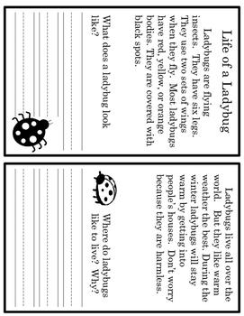 Life Of A Ladybug Balanced Literacy Lesson Plan