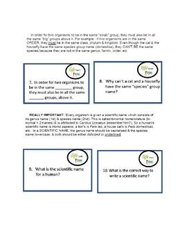 Life Over Time (Evolution) Task Cards