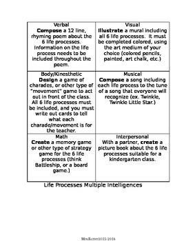 Life Process Multiple Intelligence Choice Board